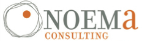 noema consulting